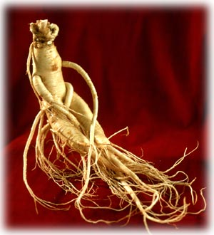 ginseng supplements for health